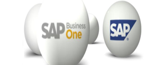 Conozca SAP Business One en segundos.